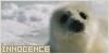 Innocence: